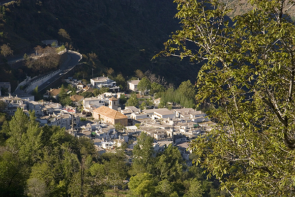 The little village of Pampaneira seen from Bubion