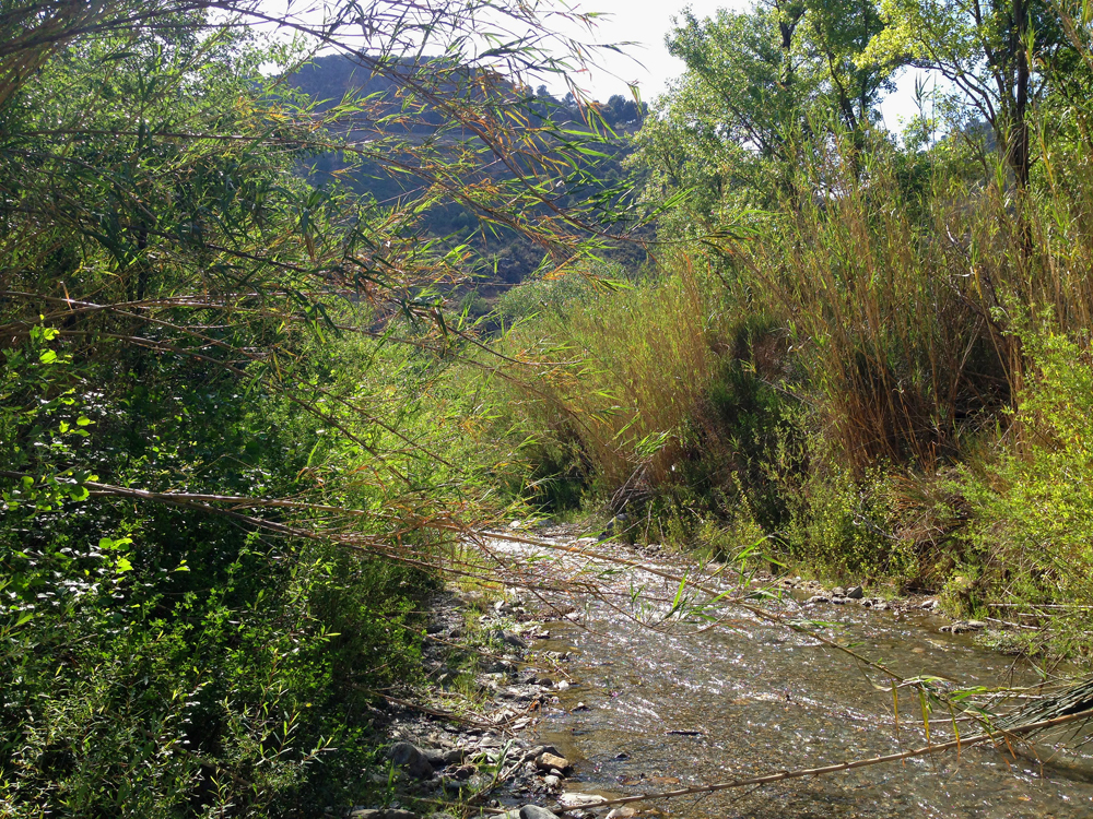 Most low Alpujarras rivers never dry
