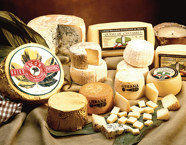 Cantabrian Cheese