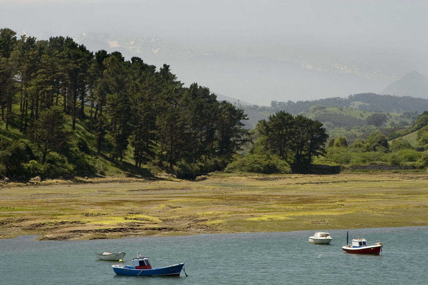 Estuary in San Vicente
