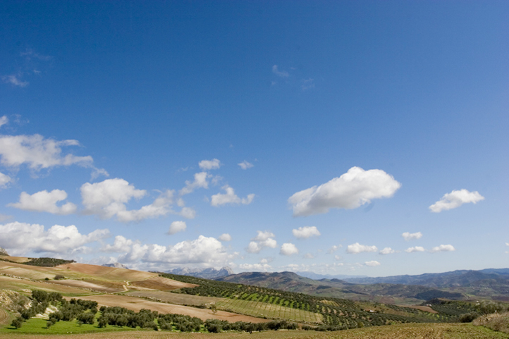 Antequera countryside