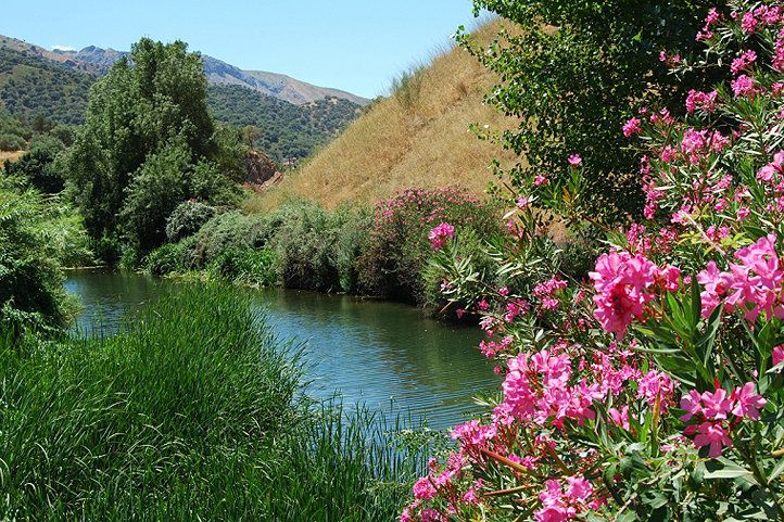 Guadiaro river in the Ronda Mountains