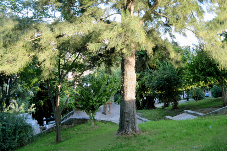 Modest shady park in Jimena