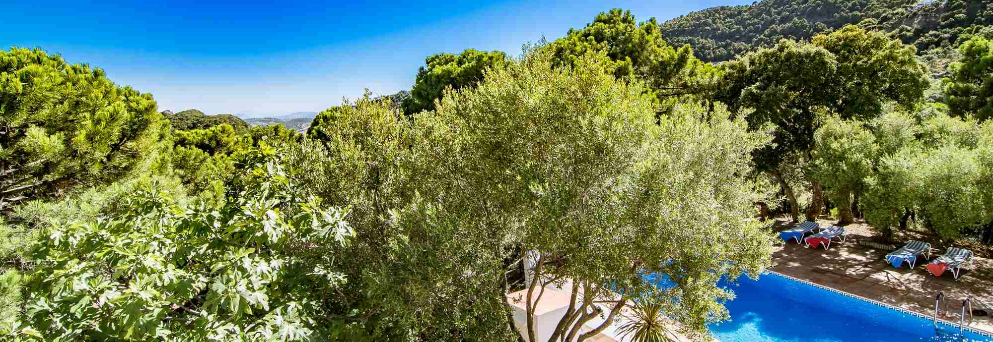 Bright Mediterranean villa set in a forest near Casares and beaches