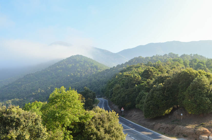 Montseny Natural Park - access road